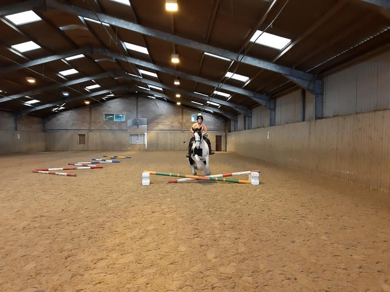 3 Day Riding Confidence Camp - Hartpury, Gloucester